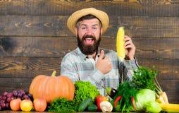 Соломенная шляпа фермера представляя свежие овощи Фермер с возникновением сельчанина доморощенного фермера сбора деревенским выра стоковые фото