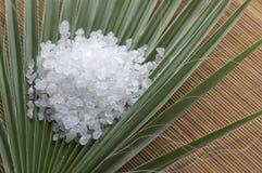соль ладони листьев ванны Стоковые Изображения RF
