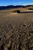 соль ландшафта сухого озера пустыни Стоковая Фотография