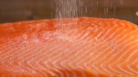 Соль льет на сырцовом филе семг сток-видео