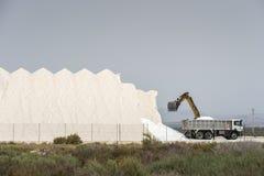 Соль моря загрузки Backhoe в тележке стоковое изображение rf