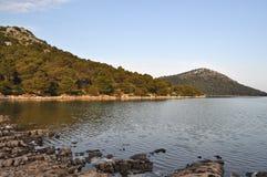 соль озера Стоковая Фотография RF