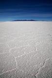 соль озера Стоковые Фото