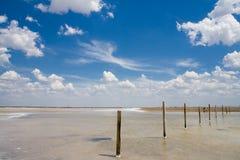 соль озера Стоковое Фото