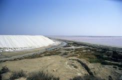соль хлебоуборки стоковое фото rf