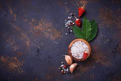 соль rosemary перца листьев трав чеснока cardamon залива spices ваниль предпосылка кулинарная Стоковое фото RF