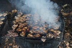 Сом моря вид сома моря известный как manyung в Индонезии и arahan в Филиппинах Рыба была сохраненными wi Стоковая Фотография RF