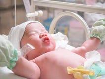 Сон младенца новорожденного в инкубаторе на больнице Стоковая Фотография