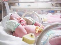 Сон младенца новорожденного в инкубаторе на больнице Стоковые Фото