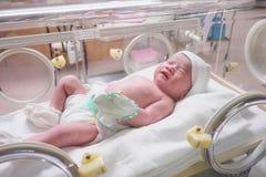 Сон младенца новорожденного в инкубаторе на больнице Стоковое Фото