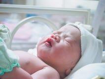 Сон младенца новорожденного в инкубаторе на больнице Стоковые Изображения RF