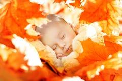 Сон младенца осени Newborn, ребенк новорожденного спать в листьях Стоковое Изображение RF