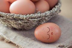Сон яичек Стоковые Фото