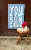 Сообщение влюбленности вы моя солнечность Стоковые Изображения RF
