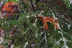 Сообщение Нового Года 2018 поздравительное при ель рождества покрытая с снегом в лесе Стоковая Фотография RF