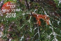 Сообщение Нового Года 2018 поздравительное при ель рождества покрытая с снегом в лесе Стоковые Изображения RF