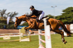 Соотечественники скачки нерезкости скорости всадника лошади Стоковые Фото