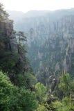 Соотечественник Forest Park Zhangjiajie Стоковое Изображение RF