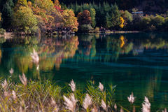 соотечественник jiuzhaigou 12 фарфоров отсутствие парка sicuan Стоковая Фотография
