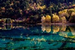 соотечественник jiuzhaigou 14 фарфоров отсутствие парка sicuan Стоковое Изображение RF