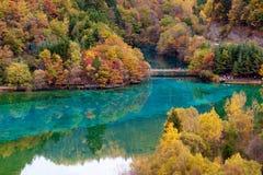 соотечественник jiuzhaigou 20 фарфоров отсутствие парка sicuan Стоковые Фото
