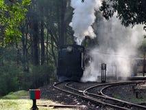 Сопя поезд пара Билли, изумруд Стоковое Изображение RF