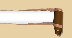 сорванная бумага Стоковое Фото
