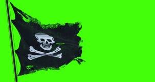 Сорванная текстура флага черепа пирата развевая в ветре, символ ткани grunge разрыва старая пирата jack ситца на зеленом цвете кл