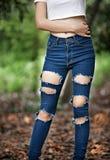 Сорванные джинсы стоковые изображения