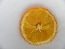 Сорванный апельсин положил год снега Стоковое Фото