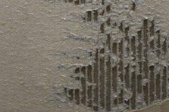 сорванный картон Стоковое Изображение