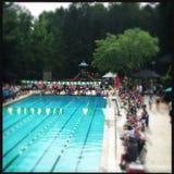Соревнования по плаванию Стоковые Изображения