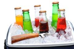 сортированная сода льда комода бутылок Стоковое Изображение RF
