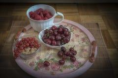 сортированное лето плодоовощ Стоковая Фотография