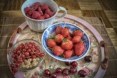 сортированное лето плодоовощ Стоковое фото RF