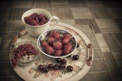 сортированное лето плодоовощ Стоковое Изображение