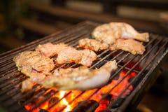 Сортированное мясо от цыпленка и свинина на гриле барбекю сварили для Стоковые Изображения