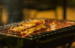 Сортированное мясо от цыпленка и свинина на гриле Стоковое Изображение