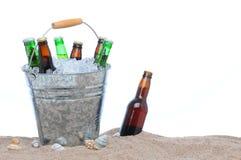 сортированные бутылки пива bucket льдед Стоковые Фотографии RF