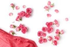 Сортированные головы роз на белой предпосылке Надземный взгляд Плоское положение Стоковое Изображение
