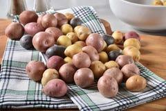 Сортированные картошки младенца Стоковое Изображение