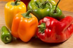 Сортированные красочные перцы Стоковое Изображение