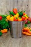 сортированные перцы и chilies в металле bucket с форматом капелек воды вертикальным Стоковое Изображение