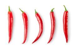Сортированные перцы chili Стоковое Изображение
