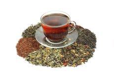 Сортированные чая - Стоковая Фотография RF