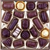 сортированные шоколады Стоковое Изображение
