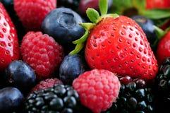 сортированные ягоды свежие Стоковое Фото