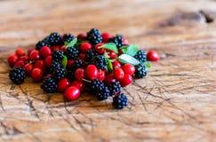 сортированные ягоды Стоковая Фотография