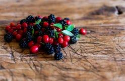 сортированные ягоды Стоковые Фото