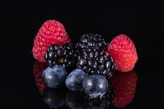 Сортированные ягоды изолированные на черноте Стоковая Фотография RF